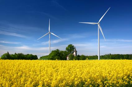 Iowa Wind Farms The Rippey Wind Farm is